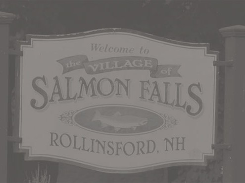 the artists of salmon falls